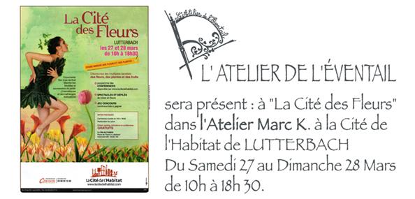 Expo La Cité de l'Habitat de Lutterbach le 27 et 28 Mars 2010